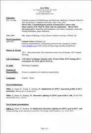 Bsc Computer Science Resume Format Sample Graduate Resumeor Student Experienced Of