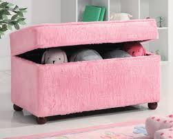 Chair In Fuzzy Pink Matching Storage Chest