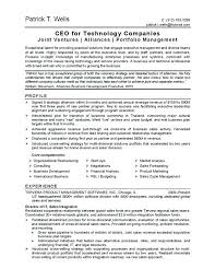 Information Technology Resume Examples Sample Samples 2014