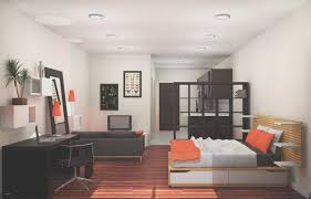 100 Tiny Apartment Design Tattoos Small Studio Splendid E Bedroom S