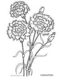 Ruby Short Mckim Spring Flower