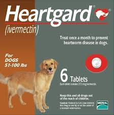 heartgard for cats heartgard heartgard plus for dogs cats vetdepot