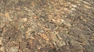 cork wall tiles home depot himalayantrexplorers