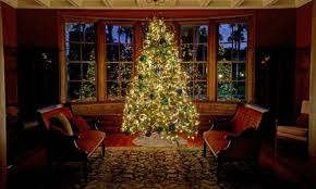 Mr Jingles Christmas Trees Gainesville Fl by Your Festive Guide To 150 Christmas Events In Atlanta