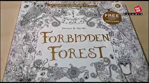 Forbidden Forest A Mysterious Journey Colouring Book