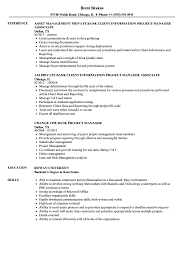 Download Bank Project Manager Resume Sample As Image File