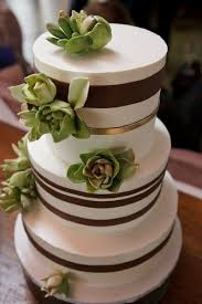 Green Succulents And Brown Ribbons Decorate A Modern Wedding Cake