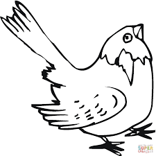 Sparrow Coloring Page Free Printable Coloring Pages