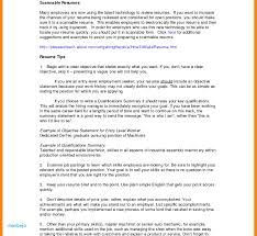 Resume Summary Examples Entry Level Qualifications