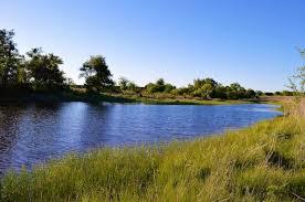 Ergle Christmas Tree Farm Oklahoma by Blake Hortenstine Ranch Properties For Sale Luxury Ranch Realestate