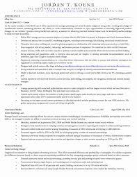 Digital Marketing Resume Sample Unique Social Media Example Examples Resumes Internet