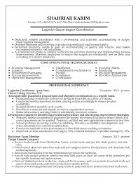 Sample Resume For Sales Coordinator Position At Ideas