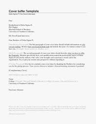 Standard Cv Format For Job Beautiful Example Resume New What Is