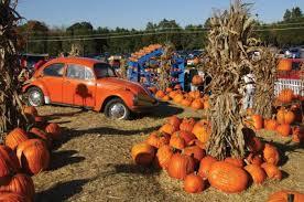 Frederick Maryland Pumpkin Patch by 13 Charming Pumpkin Patches Near Washington Dc