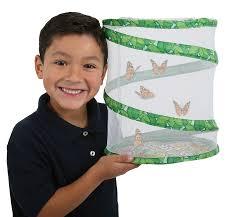 Butterfly Garden with 5 Caterpillar Voucher