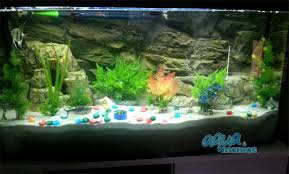 aquarium background for juwel aquarium 240 3d rock background