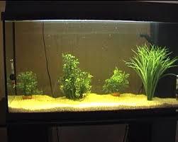 ph aquarium eau douce eau ph gh tac th conductivité kh materiel test en aquariophilie