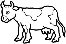 New Cow Coloring Pages Inspiring Design Ideas