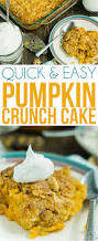 Libbys Pumpkin Pie Mix Cookie Recipe by The Very Best Pumpkin Crunch Cake Recipe You U0027ll Ever Try
