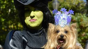 Tompkins Square Park Halloween Dog Parade Winner by A Tribute To Dogs In Costumes