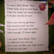 Mothers Day Poem Put With A Potted Flower Clay Pots At Michaels Craft Store Kids Paint Fill Pebbles Pipe Cleaner Stem Colored Paper