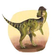 Pachycephalosaurus Wyomingensis Dino ArtOC 40mediatumblr