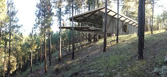 100 Tree House Studio Wood House Truss Domusstudio Architecture