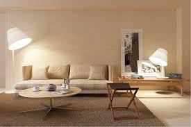 interior looking minimalist living room decoration