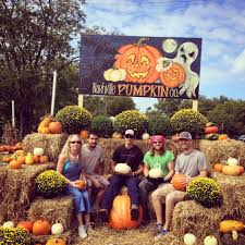 Pumpkin Patch Nashville Area by Nashville Pumpkin Company Home Facebook