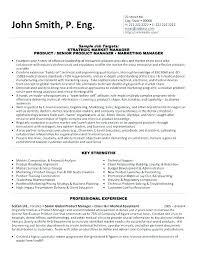 Vp Of It Resume 2 Samples Operations Putasgae