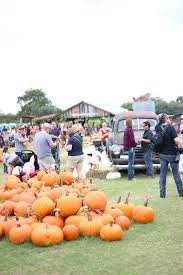 Denver Downs Pumpkin Patch Hours by A Southern Perspective