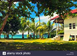 100 Northshore Bungalows Hawaii House Palm Tree Stock Photos Hawaii House Palm Tree