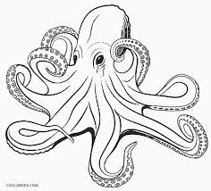 Coloring Pages Octopus