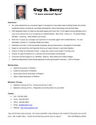 Resume Sample Realtor Examples
