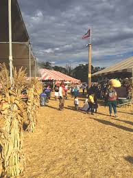 Underwood Farms Pumpkin Patch Hours by Underwood Farms Pumpkin Patch Find Your Perfect Pumpkin Where