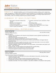 Program Manager Resume Sample New Junior Project Examples