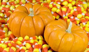 Pumpkin Picking Nj by Great Pumpkin Festival September 16 November 5 In Vernon Nj