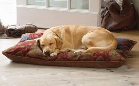 soft pillow dog bed pillow tapestry dog bed orvis