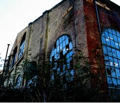 100 Warehouse Sf Abandoned Dogpatch SF Weeds Christopher Sessums
