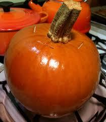 Pressure Canning Pumpkin Puree by Kick The Can Ned Pumpkin U2013 The Zero Waste Chef
