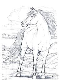 Free Printable Realistic Horse Coloring Pages 01