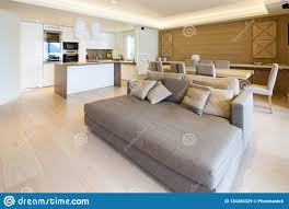 100 Sofa Living Room Modern Spacious In Apartment With Parquet And Elegant