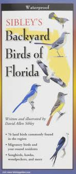 Sibley's Backyard Birds Of Florida: Folding Guide (Foldingguides ... Marketplace Audubon Mason Bees Backyard Bird Shop Sibleys Birds Of The Midatlantic Southcentral States Amazoncom In Garden Wall Calendar 2018 Home Page The House Ny 97 Best Michaels Craft Store Coupons Discounts Images On Wild Fersbirdseed Blendsnature 25 Unique Birds Unlimited Ideas Pinterest Stained Glass Patterns 01557013429 Predator Guide Protect Your Yard Little Book Songs Andrea Pnington Caz