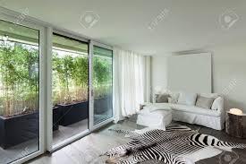 gemütliches wohnzimmer leder zebra auf dem boden weiße wände
