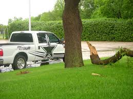 Broken Tree Limb Next To A Dallas Cowboys Truck   I Live In …   Flickr Goverizon Nfl Tailgate Event In Arlington Texas Verizon Dallas Cowboys Heavy Duty Vinyl 2pc 4pc Floor Car Truck Suv New Era Womens Whitegray Mixer 9twenty Special Edition Page 2 The Ranger Station Forums Pin By Madisonyvei On Denver Broncos Womens Pinterest Ford Rc Monster Girl Cartruck Decal Sports Decals And Cynthia Chauncey White Shine 9forty Adjustable Hat Intro Debuts F150 Bestride Bus Invovled Crash 2016 Cowboy Grapevine Tx