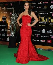 Best Dressed at the IIFA Awards 2015