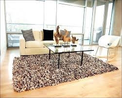 Most Popular Area Rugs 2017 Awesome Shag 5 X 8 The Home Depot For