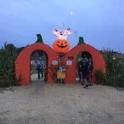 Pumpkin Patches Near Chico California by River K Pumpkin Farm Pumpkin Patches 5670 North River Rd Paso