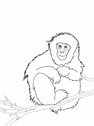 Cute Monkey Coloring Pages Printable