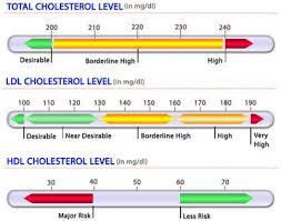 hdl cholesterol range normal hdl numbers best 2017